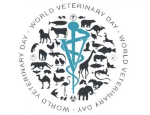Premiul Zilei Mondiale a Medicului Veterinar 2019