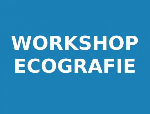 Workshop Ecografie